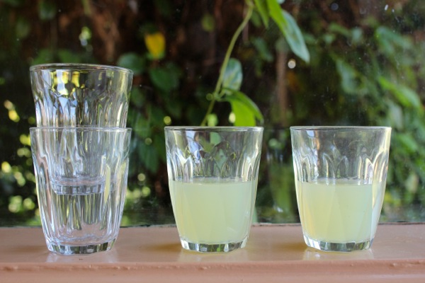 Shots of limoncello ready for drinking